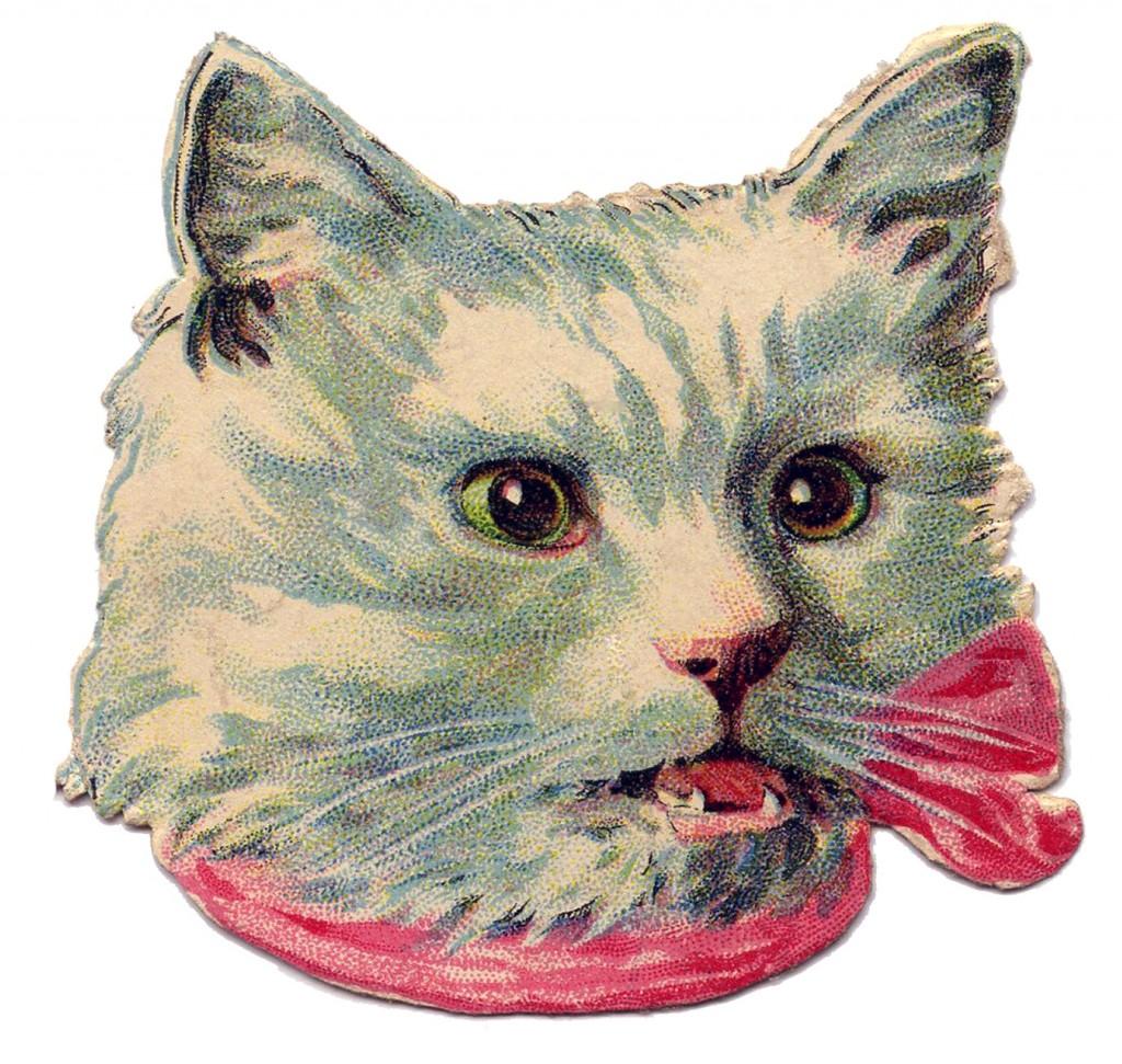 White Cat Vintage Image
