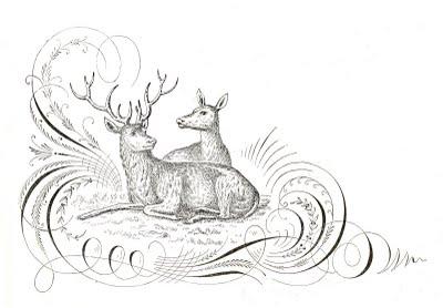 Free Antique Clip Art Pen Flourishing With Deer The