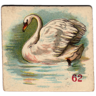 Free Victorian Clip Art – Beautiful Swan