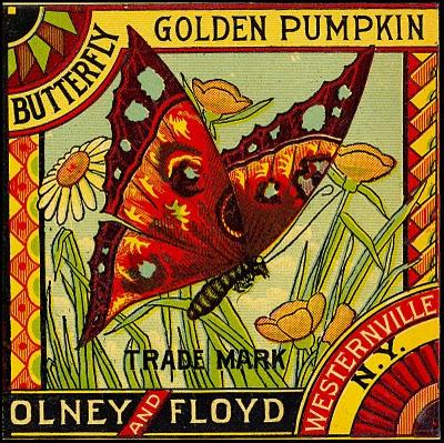 Vintage Clip Art Image – Butterfly Label
