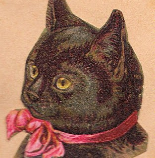 Vintage Graphic – Black Cat