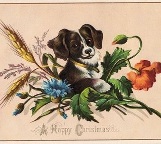 Free Vintage Clip Art – Cute Puppy