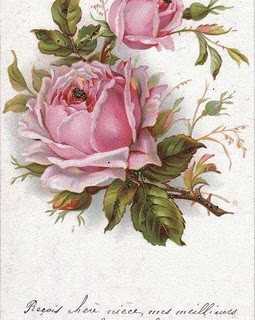 Vintage Clip Art – French Roses Postcard