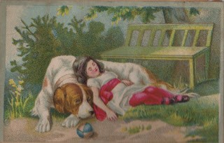Girl with Dog – St Bernard