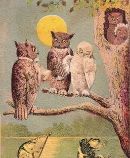 Vintage Owl Graphic – Halloween-ish