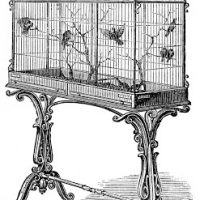 Vintage Stock Image - Fancy Victorian Bird Cage - Graphics Fairy