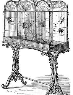 Vintage Stock Image – Fancy Victorian Bird Cage