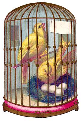 Vintage Image – Fabulous Bird Cage – Canaries – Nest