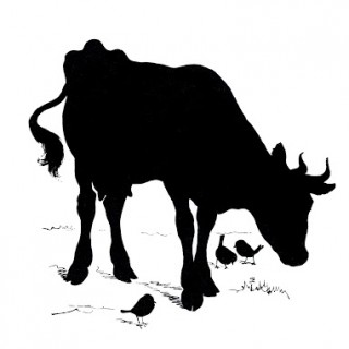 Vintage Silhouette Image – Cow with Birds
