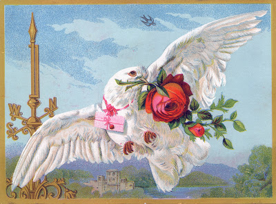 Vintage Bird Image - White Dove with Roses - Graphics Fairy