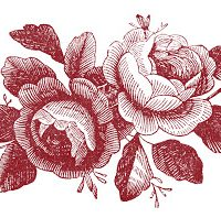Antique Stock Images - Rose Engravings - Godey