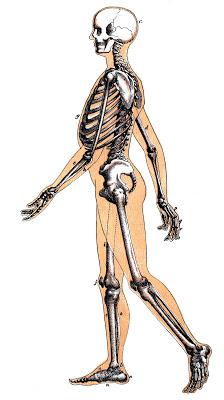 Vintage Halloween Image – Skeleton Man Walking