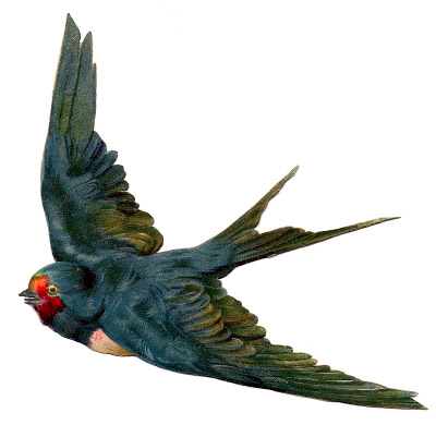 Vintage Bird Image - L...