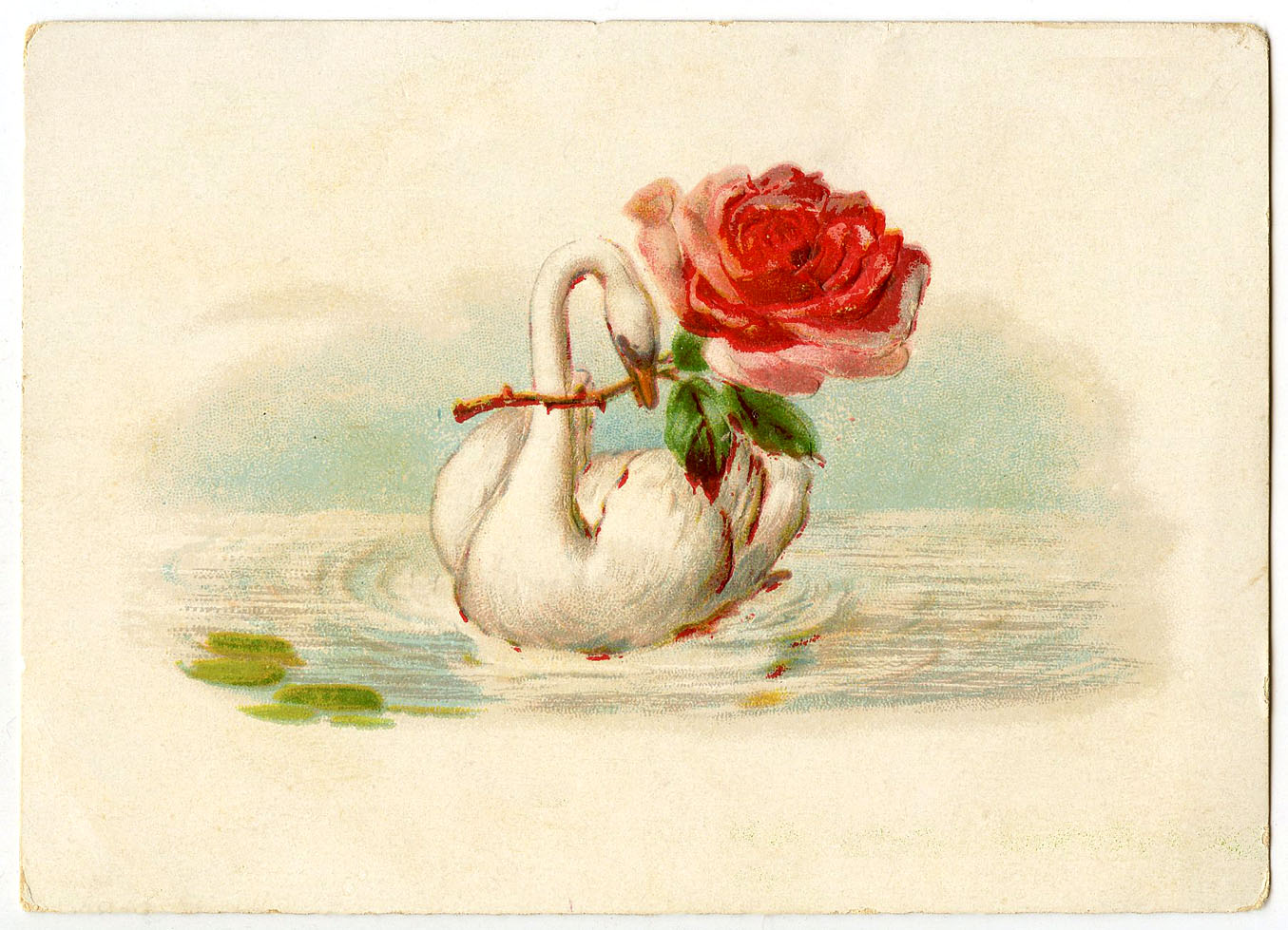 Vintage Image - French Swan with Rose - The Graphics Fairy