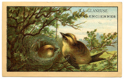 Vintage French Ad - Cute Birds with Nest