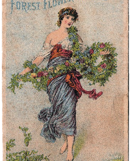 Cologne Advertising Trade Card