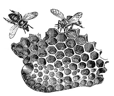Vintage Clip Art – Bees with Honeycomb
