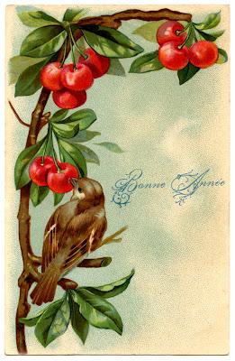 Beautiful Vintage Bird with Cherries