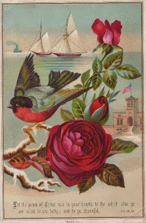 Bluebird & Red Roses
