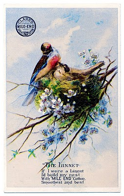 Pretty Birds with Nest Image – Thread Trade Card