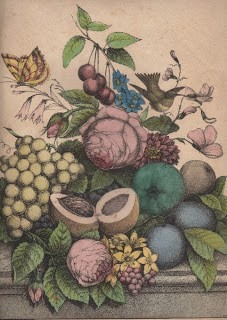 Early Fruit & Floral Print