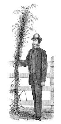 Odd Clip Art – Farmer with Giant Plant