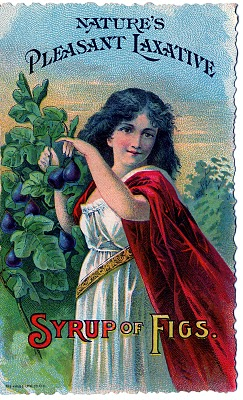 Vintage Graphic – Gorgeous Girl with Figs