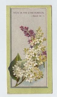 Victorian Lilacs