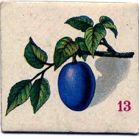 Plum Fruit Game Card