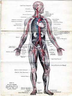 Medical Ephemera