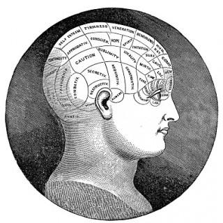 Vintage Clip Art – Antique Phrenology Head