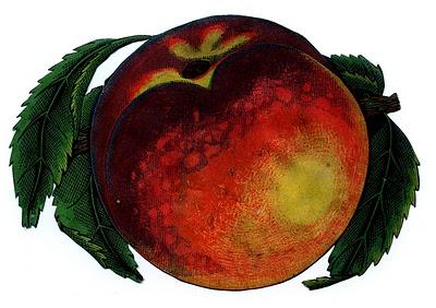 Juicy Red Peach Image