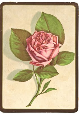 Surprising Free Vintage Clip Art Perfect Pink Rose The Graphics Fairy Personalised Birthday Cards Sponlily Jamesorg