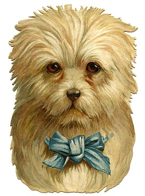 vintage clip art darling dog with bow the graphics fairy