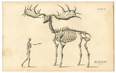 Instant Halloween Art Printable Download – Walking Skeleton Man + Elk
