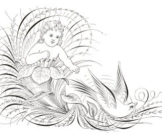 Free Antique Clip Art – Pen Flourishing Bird and Flower Fairy