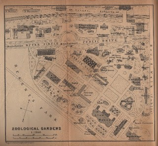 Zoological Gardens Map
