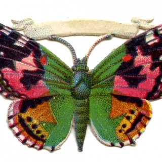 Free Vintage Butterfly Image – Pink and Green – Scrap