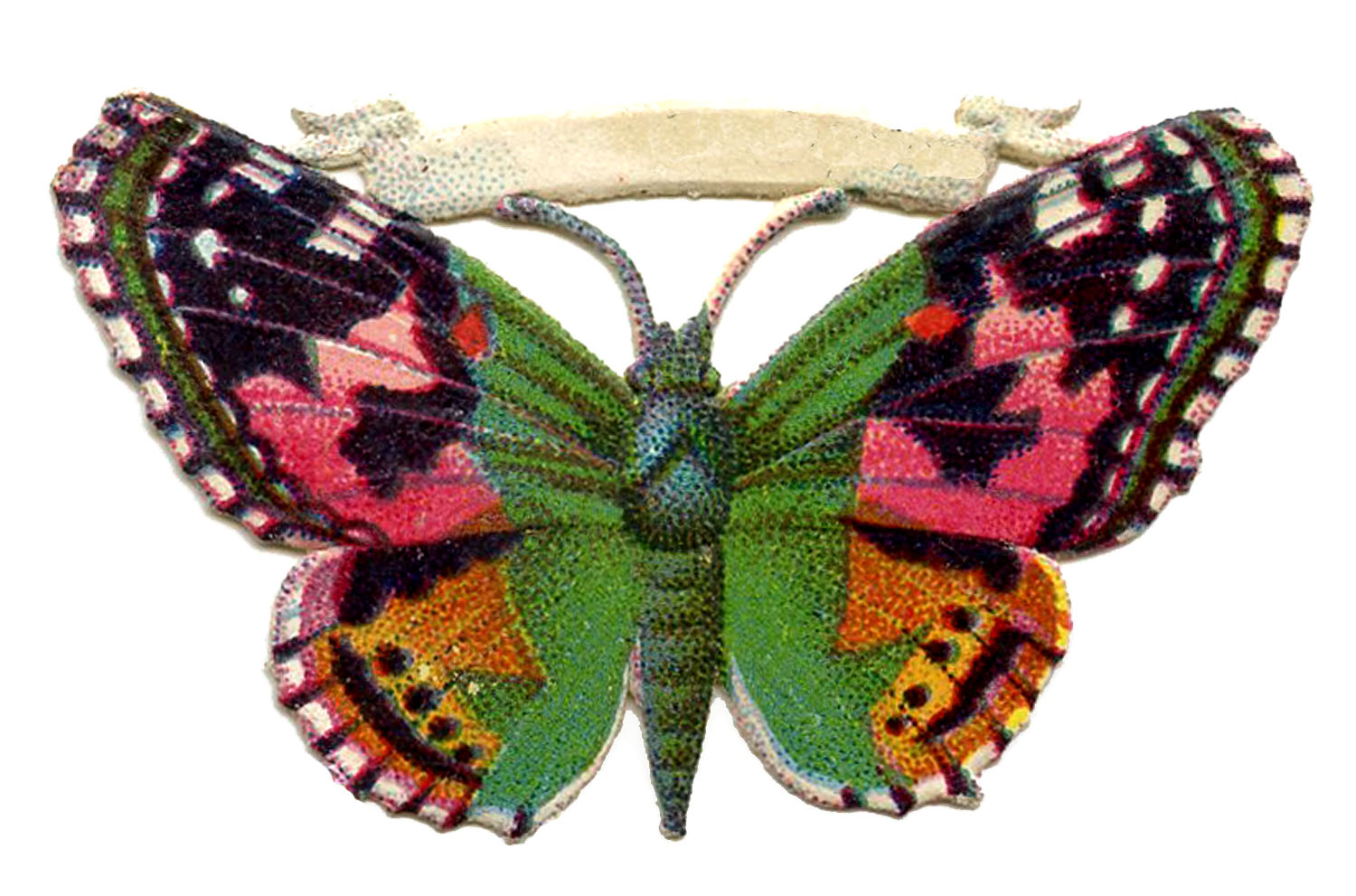 free vintage butterfly image pink and green scrap the