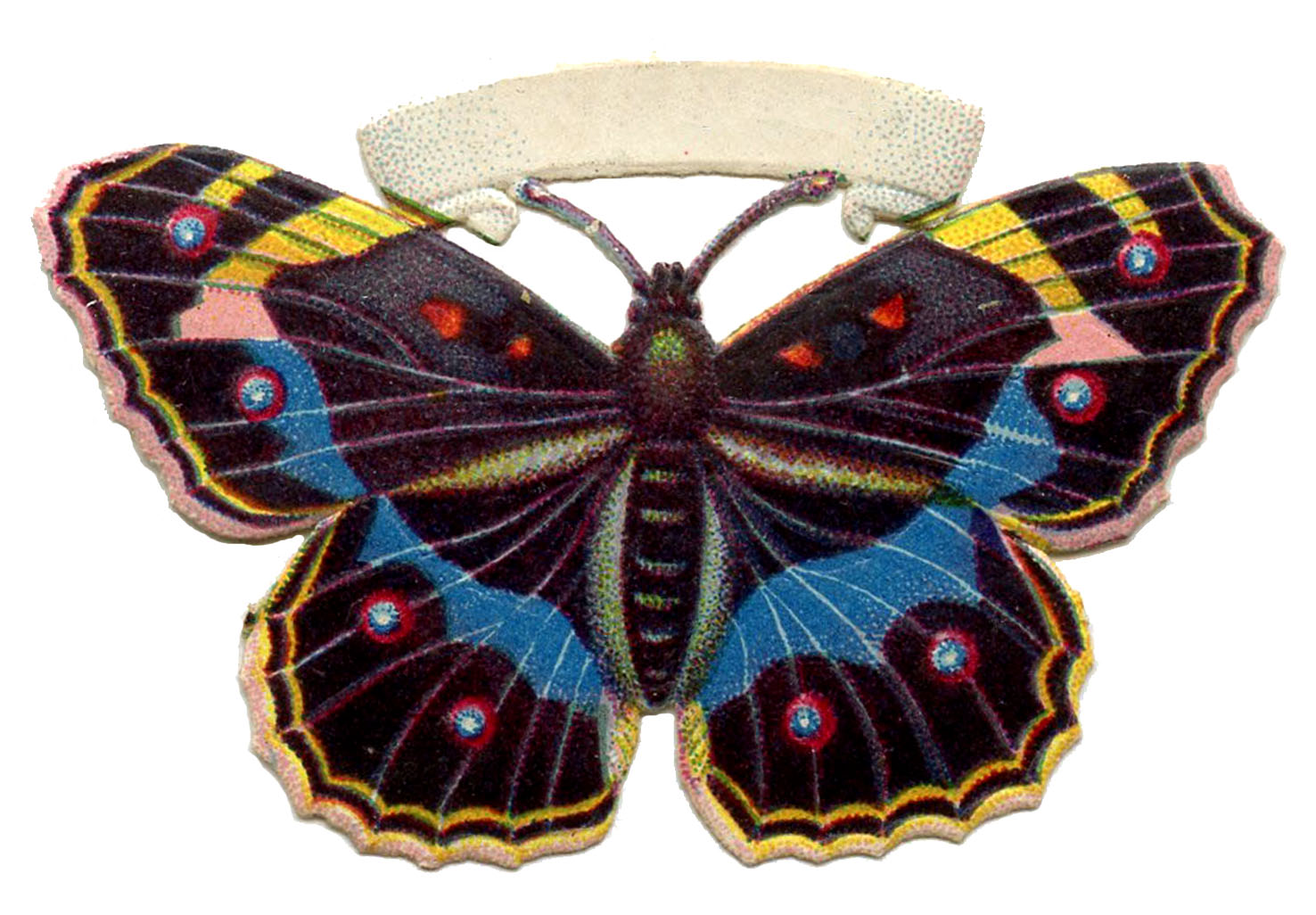 Butterfly Vintage Image Spotted