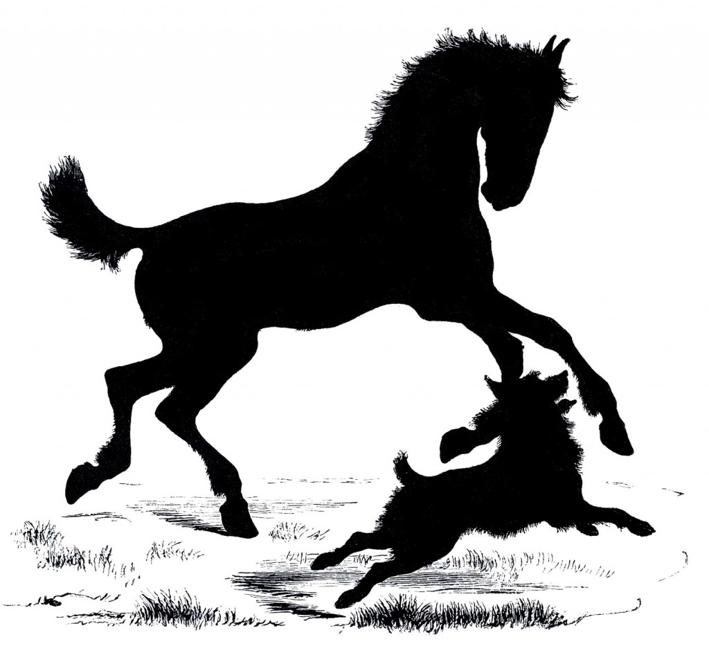 Horse Dog Silhouette Vector Images
