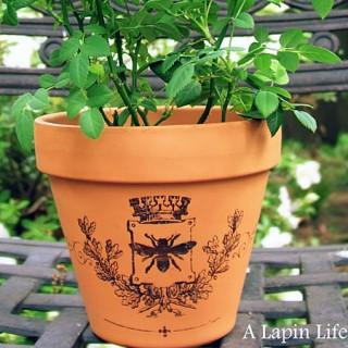 Image Transfer Garden Pot