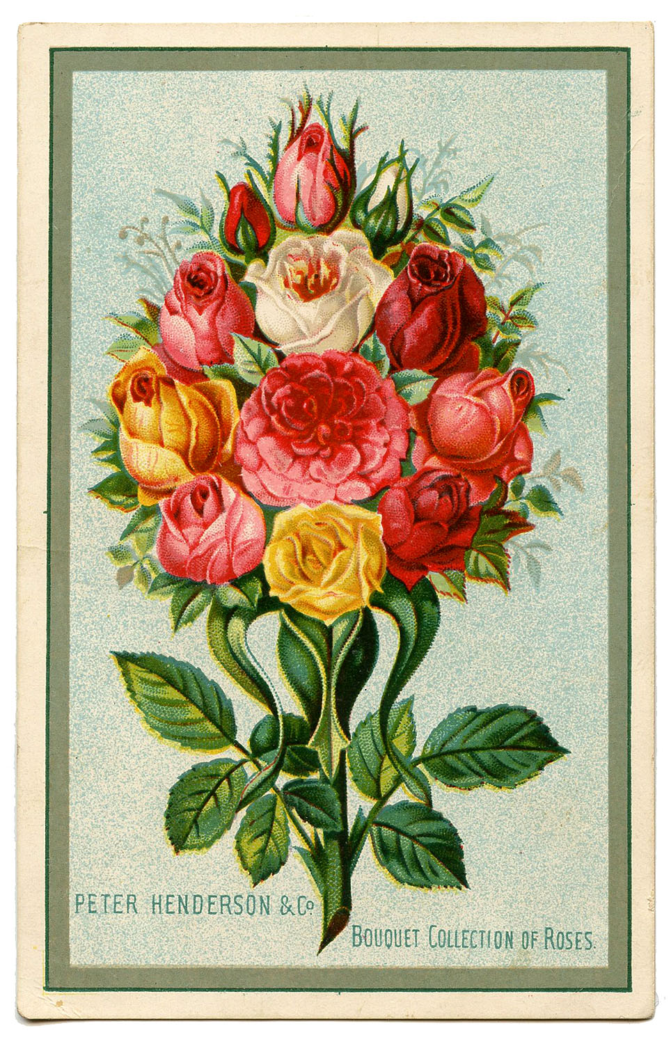 Royalty Free Image Rose Bouquet