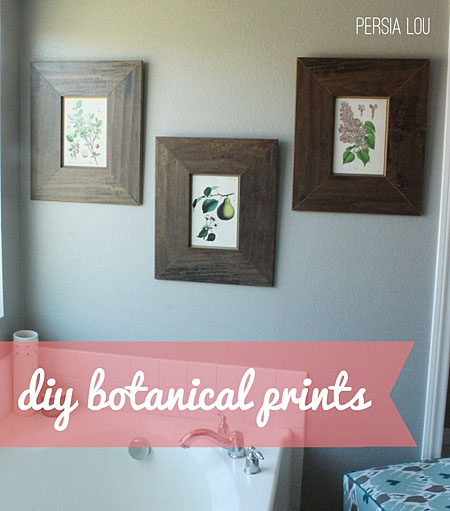 DIY Botanical Prints