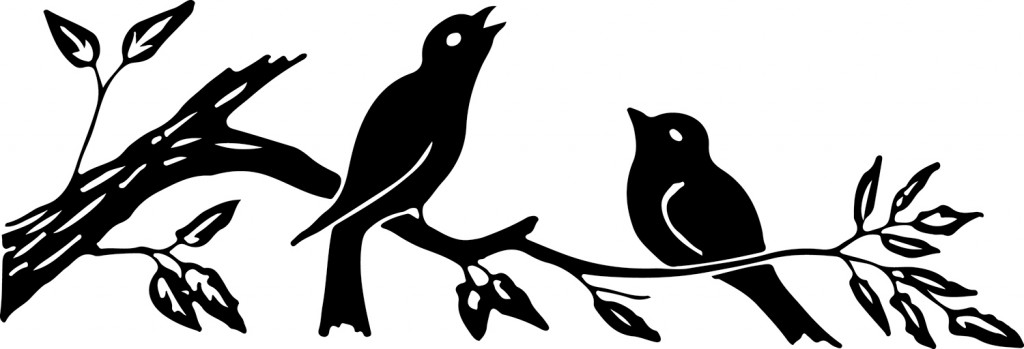 Silhouette Images Birds on Branch