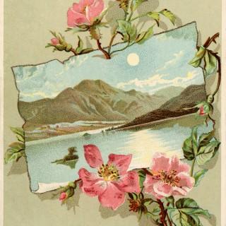 Vintage Rose Frame Images
