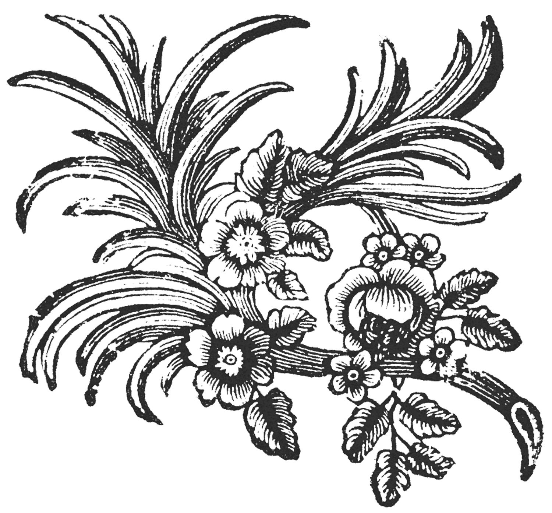 Italian ornaments - Free Floral Ornaments
