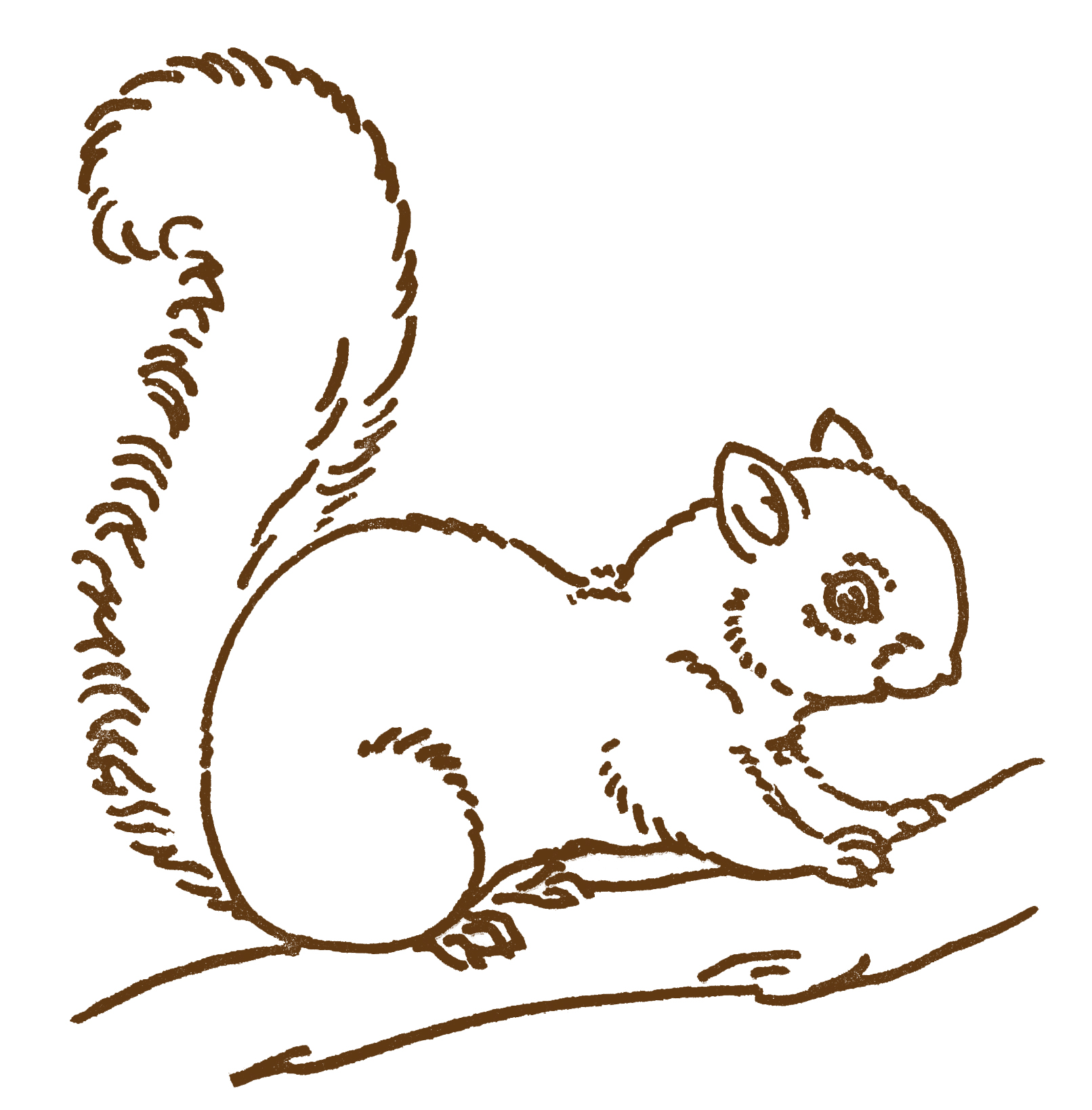 Line Drawings Of Cute Animals : Free line art images squirrel drawings the graphics fairy