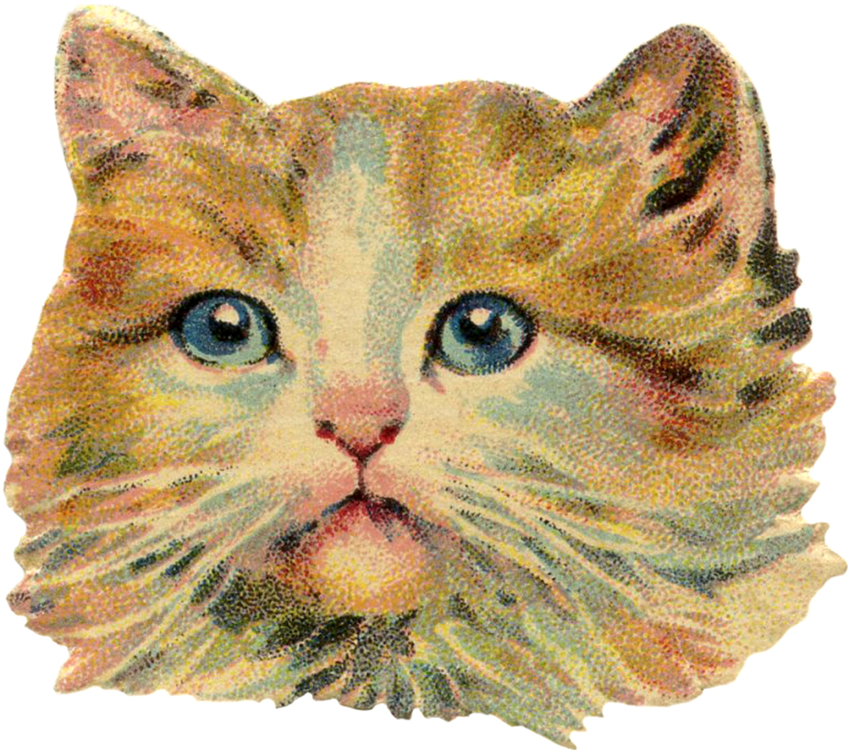 Vintage Cat Image