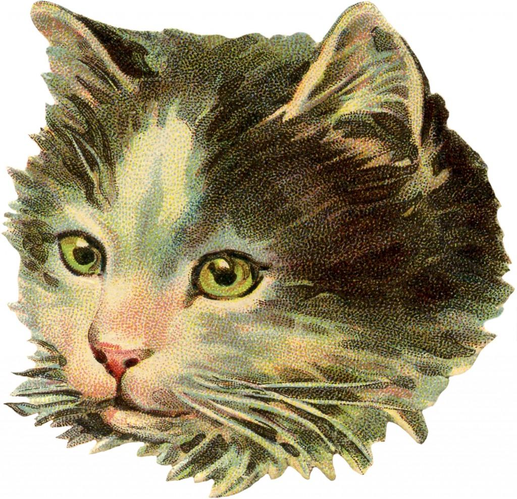 Vintage Cat Illustration